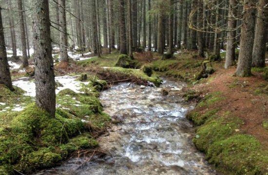 Wandern Welschnofen - Eggental / Dolomiten 2
